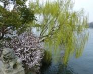 Westsee (Xī Hú - 西湖)