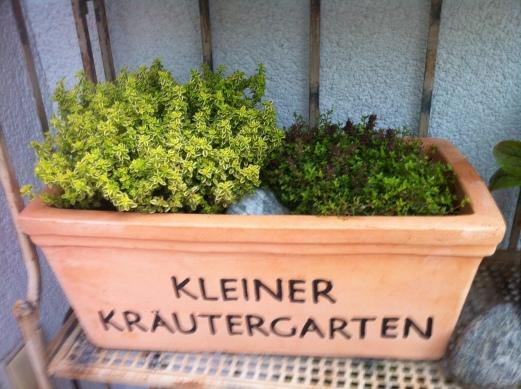 2 x Thymian für mediteranes Gemüse