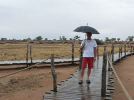 Regen in der Kalahari Red Dunes Lodge