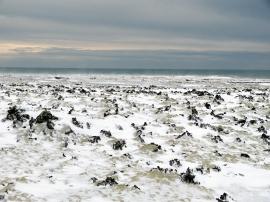 Verschneites Lavafeld