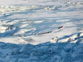 Großes Krabbeln auf dem Gletscher