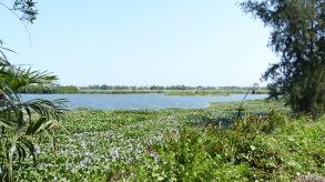 Landschaft um Hoi An