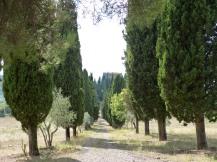 Villa Falsini