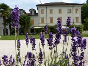 Art Hotel Varese