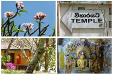Dambadeniya Tempel
