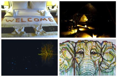 Aliya Resort