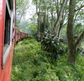 Im Zug nach Ella
