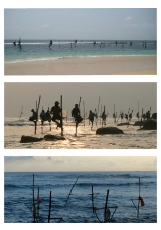 Stelzenfischer in Weligama