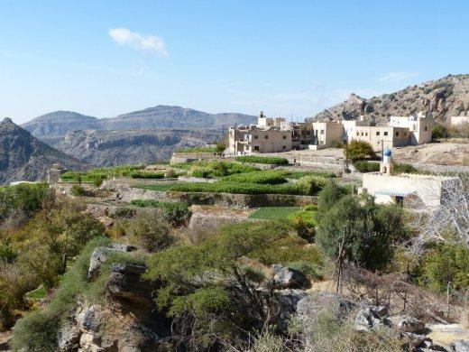 Sayq Plateau