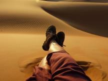 Desert Nights Camp