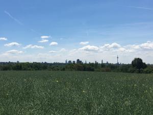 Blick auf Frankfurt