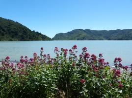 Okiwi Bay
