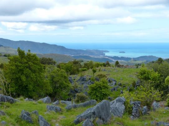Blick auf den Abel Tasman Park