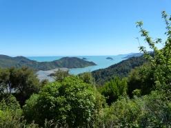 Fahrt durch den Marlbourough Sound