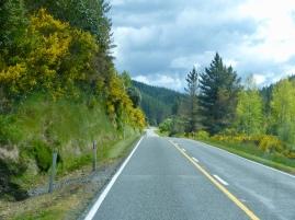 Buller Gorge Road