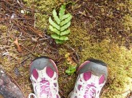 Nasse Füsse - aber der Schuh ist noch am Fuß