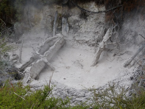 Orakei Korako Mud Pools