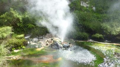 Waimangu Valley
