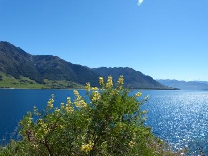 Lake Hawea glitzert
