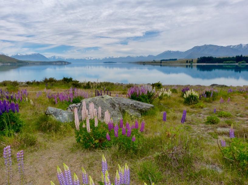 Morgenstimmung am Lake