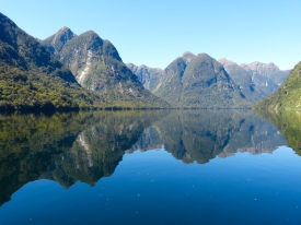 Tolle Spiegelung der Berge im Doubtful Sound
