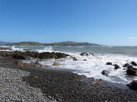 Tolle Westküste auf der Nordinsel