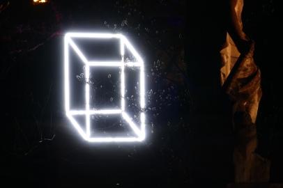 Beleuchtete Knospen