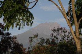 Freier Blick auf den Kilimanjaro