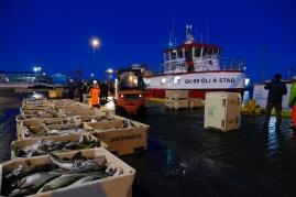 Das neue Boot: Oli A Stad