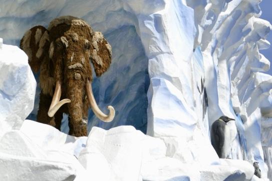 Die Eiszeit