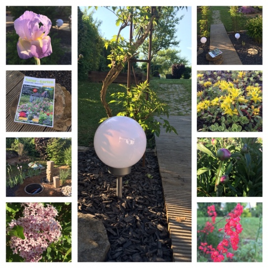 Schöner Garten (9.Mai)