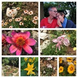 Glücker Tag im Garten