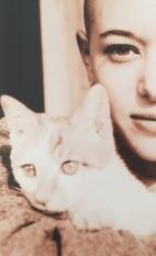 Fotosession: Katze mit Glatze