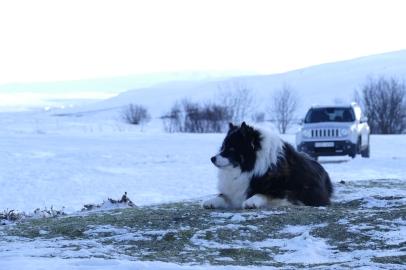 Der Fluffi bewacht die Quelle & unser Auto